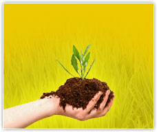 Plantmate Organic Fertilizers