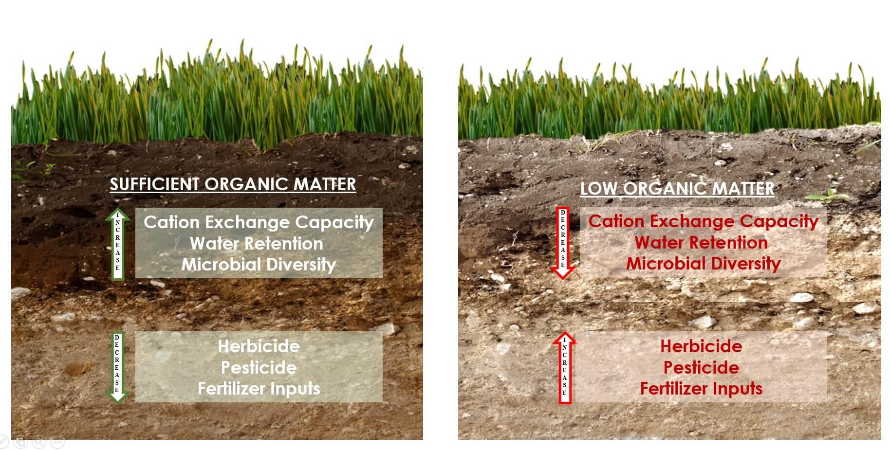 organic materials in soil